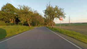 Conducción de automóviles en camino rural del campo de la primavera con el callejón del árbol metrajes