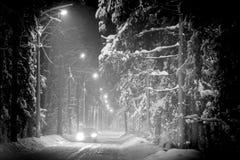 Conducción de automóviles en el bosque del invierno cubierto con nieve Fotografía de archivo libre de regalías