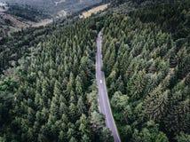 Conducción de automóviles en el camino en el bosque Imagen de archivo libre de regalías