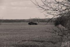 Conducción de automóviles en el salvaje imagen de archivo