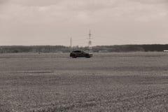 Conducción de automóviles en el salvaje fotografía de archivo libre de regalías