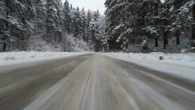 Conducción de automóviles en un bosque del invierno