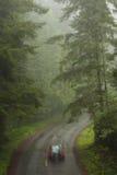 Conducción de automóviles a través de bosque de la secoya Fotografía de archivo libre de regalías