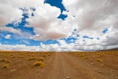 Conducción del camino del desierto Imagenes de archivo