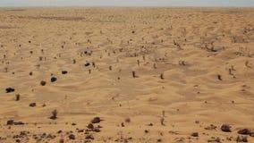 Conducción del coche campo a través en el desierto del Sáhara metrajes