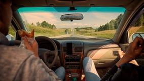 Conducción del coche en el camino de la montaña fotos de archivo