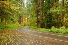 Conducción del otoño Imágenes de archivo libres de regalías