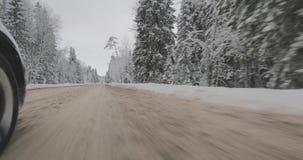Conducción en coche en bosque del invierno metrajes