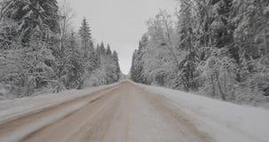 Conducción en coche en bosque del invierno almacen de metraje de vídeo