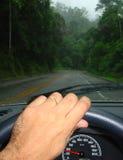 Conducción en el medio de un bosque Foto de archivo libre de regalías
