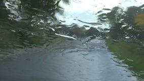 Conducción en la lluvia metrajes