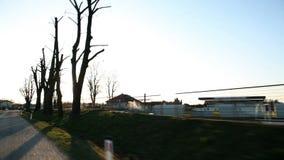 Conducción en la puesta del sol cerca del crecimiento de los árboles almacen de video