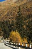 Conducción en otoño Imagenes de archivo
