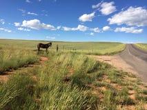 Conducción en Wyoming Fotos de archivo