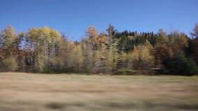 Conducción a lo largo de la carretera en otoño metrajes