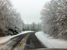 Conducción a través de árboles nevados foto de archivo libre de regalías