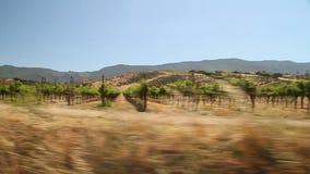 Conducción a través del país vinícola de California almacen de metraje de vídeo