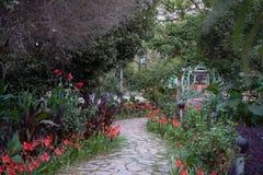 Conducendo nel giardino dell'Eden fotografie stock libere da diritti