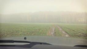 Conduciendo en una niebla, almacen de metraje de vídeo