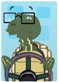 Conduciendo los humores - tortuga ilustración del vector