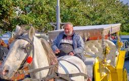 Conducteur arrière de chariot de cheval photo libre de droits