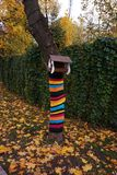 Conducteur d'oiseau en parc Le tronc d'arbre est décoré d'une chose tricotée rayée multicolore image stock