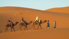 Conducteur de chameau avec la caravane de touristes de chameau Photo libre de droits