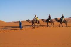 Conducteur de chameau avec la caravane de touristes de chameau Photographie stock