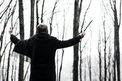 Conducteur de la forêt Images libres de droits