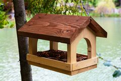 Conducteurs d'oiseau Supports en bois pour des oiseaux sur un arbre Image libre de droits