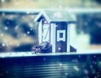 Conducteurs de moineau et d'oiseau au fond de nature d'hiver avec la neige Photographie stock libre de droits