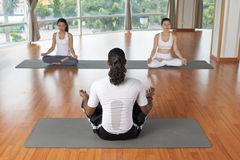 Conducting lesson of yoga. Male yoga teacher showing conducting a lesson, view from the back Royalty Free Stock Image
