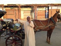 Conductor con errores egipcio Foto de archivo libre de regalías