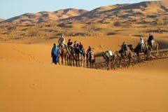 Conductor del camello con la caravana del camello en desierto Fotos de archivo