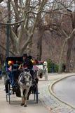 Conductor del carro en el sombrero de copa en Central Park, Nueva York fotos de archivo libres de regalías