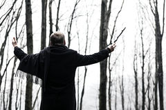 Conductor of the forest Royalty Free Stock Images