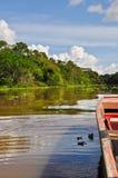 Conduisant à vitesse normale l'Amazone Photos libres de droits