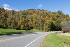 Conduisez dans des forêts d'Atumn images libres de droits