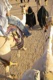 conduite de chameaux Images libres de droits