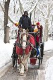 Conduite de chariot en hiver Photo stock