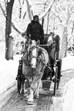 Conduite de chariot en hiver Images stock