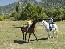 Conduite de cheval. photographie stock