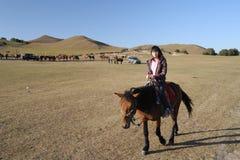 Conduite de fille le cheval Image libre de droits