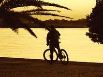 Conduite de vélo Photographie stock