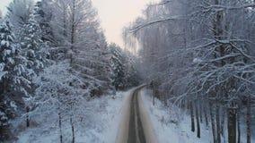 Conduite sur la route de campagne d'hiver dans la forêt neigeuse, vue aérienne banque de vidéos