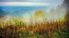 Condução através do parque nacional de montanhas de cume azul Fotos de Stock