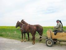 Condurre un carretto con due cavalli immagine stock libera da diritti