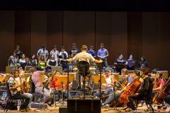 Condutor na orquestra clássica no trabalho em Manaus, Brasil Imagem de Stock