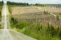 Conduttura dell'Alaska e Dalton Highway Fotografie Stock Libere da Diritti