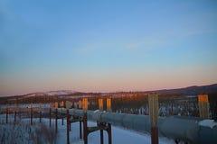 Conduttura dell'Trans-Alaska al tramonto nell'inverno Fotografia Stock Libera da Diritti